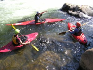 "These kayakers are paddling around an eddy. They need to paddle across the ""eddy fence"" to get to the main current."